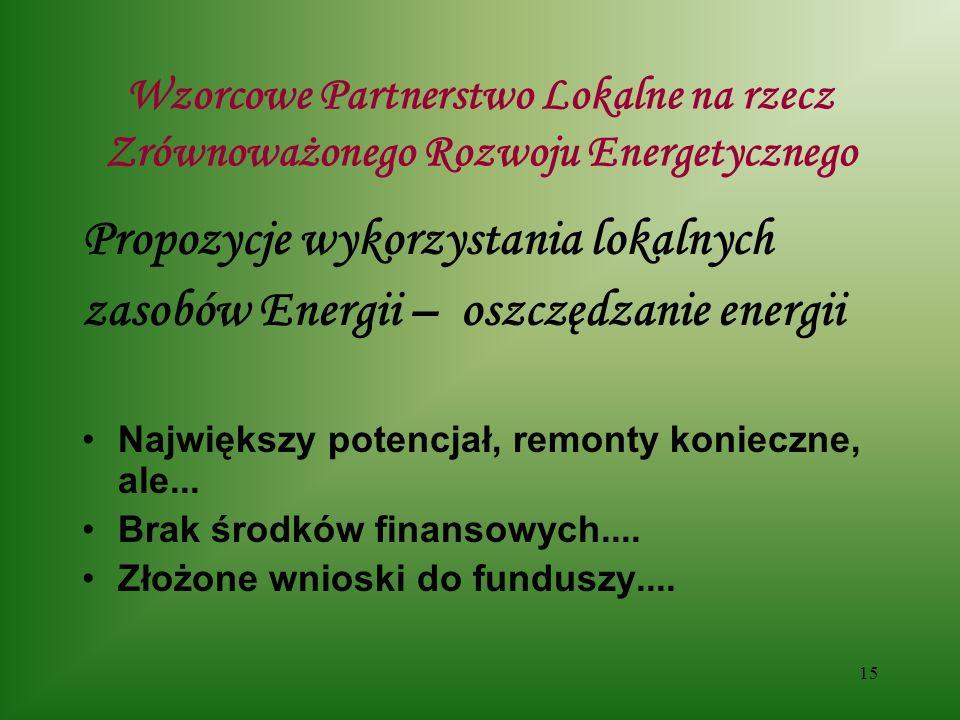 15 Wzorcowe Partnerstwo Lokalne na rzecz Zrównoważonego Rozwoju Energetycznego Propozycje wykorzystania lokalnych zasobów Energii – oszczędzanie energii Największy potencjał, remonty konieczne, ale...