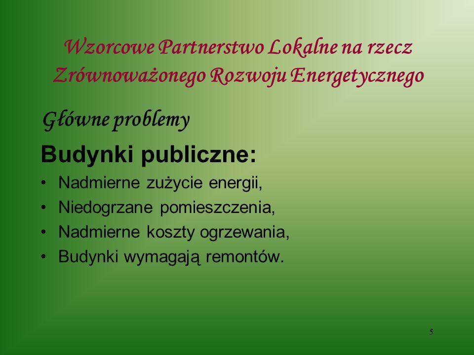 16 Wzorcowe Partnerstwo Lokalne na rzecz Zrównoważonego Rozwoju Energetycznego Propozycje wykorzystania lokalnych zasobów Energii – co przeszkadza brak biomasy, czy na pewno ???.