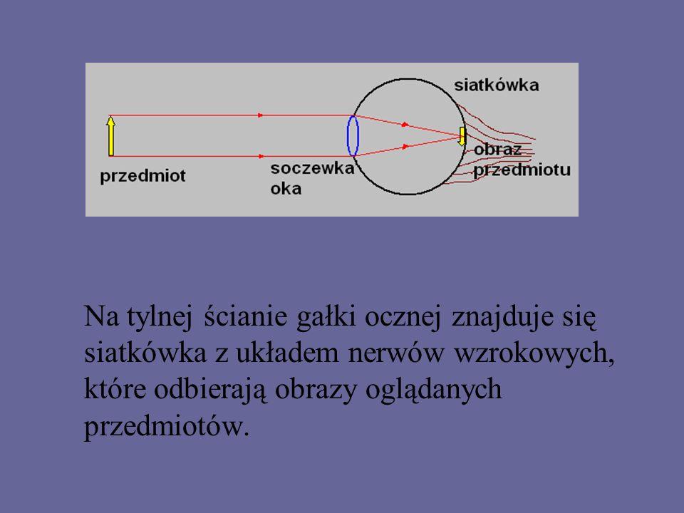Lekcja fizyki w szkole ponadgimnazjalnej -dalekowzroczność -krótkowzroczność