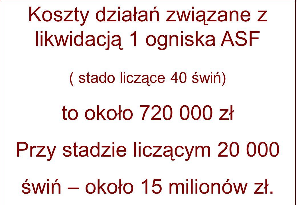 Koszty działań związane z likwidacją 1 ogniska ASF ( stado liczące 40 świń) to około 720 000 zł Przy stadzie liczącym 20 000 świń – około 15 milionów