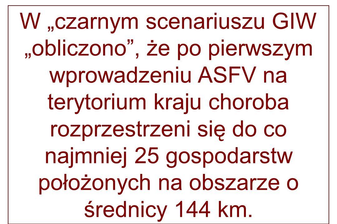 W czarnym scenariuszu GIW obliczono, że po pierwszym wprowadzeniu ASFV na terytorium kraju choroba rozprzestrzeni się do co najmniej 25 gospodarstw po