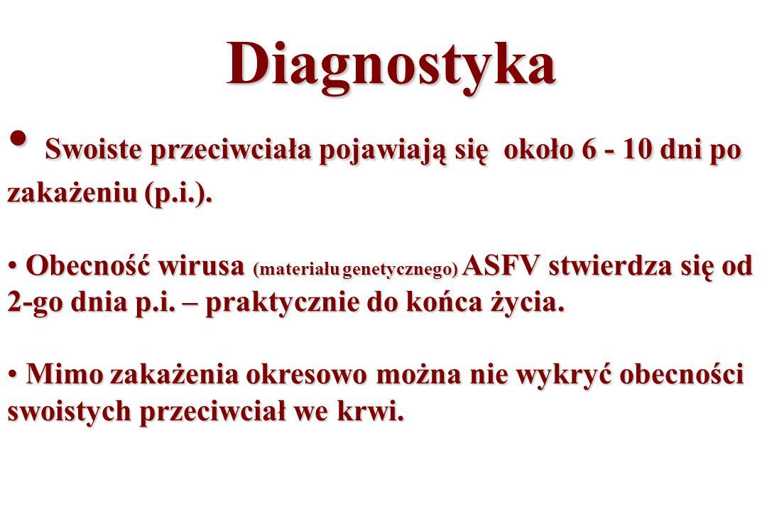 Diagnostyka Diagnostyka Swoiste przeciwciała pojawiają się około 6 - 10 dni po zakażeniu (p.i.). Swoiste przeciwciała pojawiają się około 6 - 10 dni p