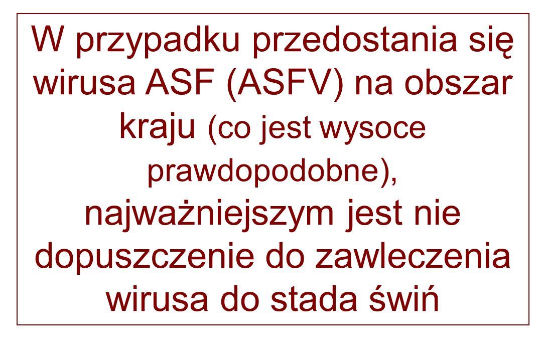 W przypadku przedostania się wirusa ASF (ASFV) na obszar kraju (co jest wysoce prawdopodobne), najważniejszym jest nie dopuszczenie do zawleczenia wir