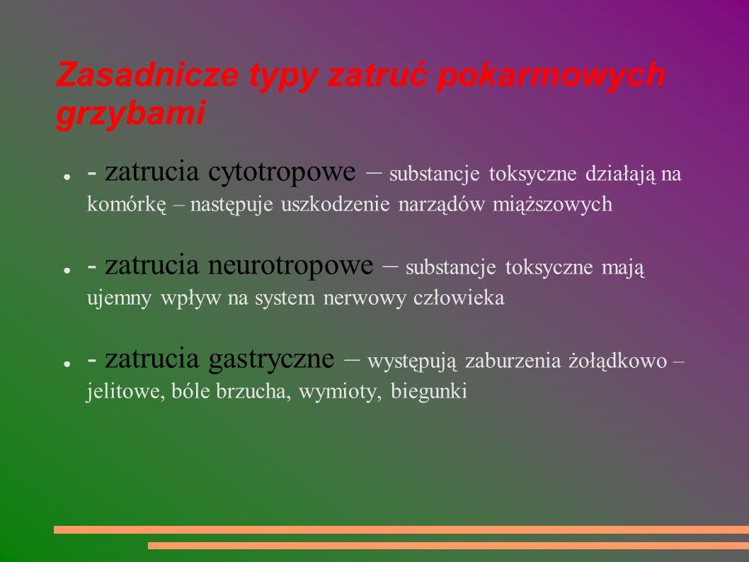 Zasadnicze typy zatruć pokarmowych grzybami - zatrucia cytotropowe – substancje toksyczne działają na komórkę – następuje uszkodzenie narządów miąższo