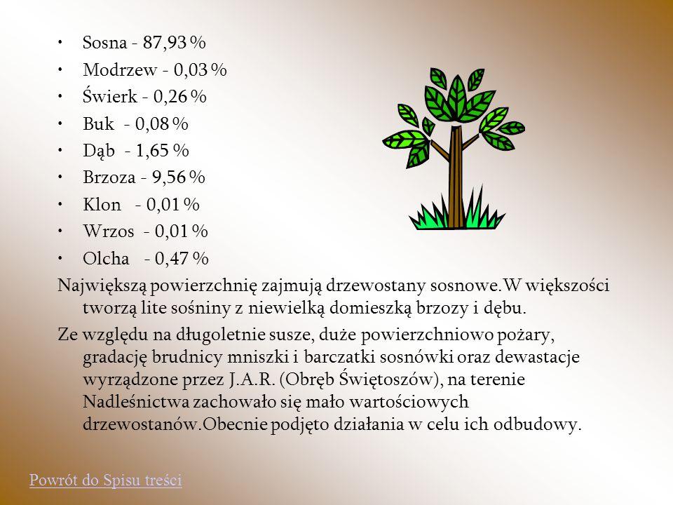 Sosna - 87,93 % Modrzew - 0,03 % Świerk - 0,26 % Buk - 0,08 % Dąb - 1,65 % Brzoza - 9,56 % Klon - 0,01 % Wrzos - 0,01 % Olcha - 0,47 % Największą powi