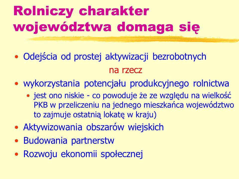 Historia programów partnerskich na Lubelszczyźnie Okres od roku 2003 zPHARE – Spójność Społeczno – Gospodarcza (SGG) - Program PHARE 2000 Rozwój Zasobów Ludzkich (RZL)