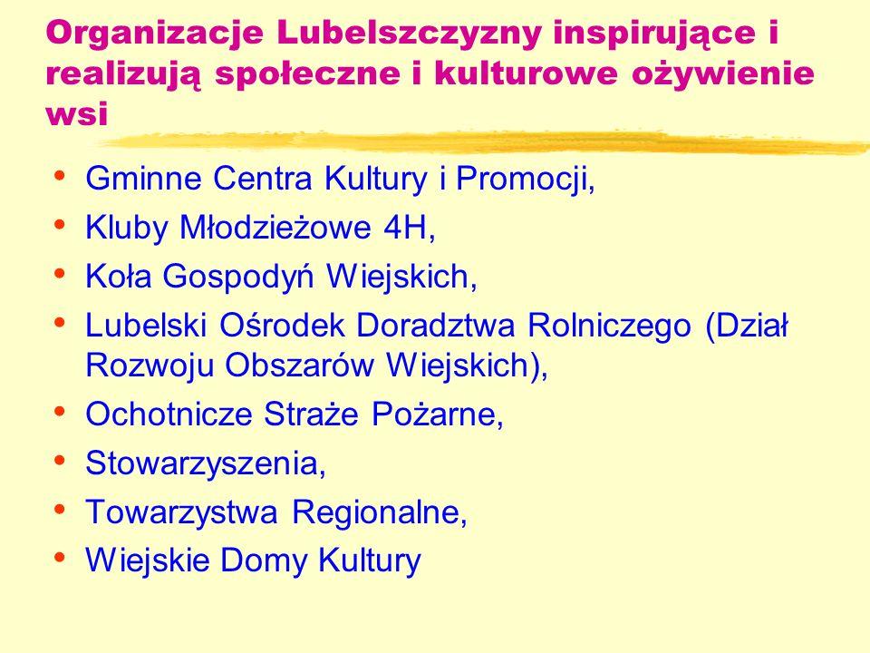Historia programów partnerskich na Lubelszczyźnie Lata 1989 – 1995: PHARE - Program Rozwoju Społeczno – Gospodarczego (SED) - Program Inicjatyw Lokalnych (PIL) Realizowany przez Biłgoraj