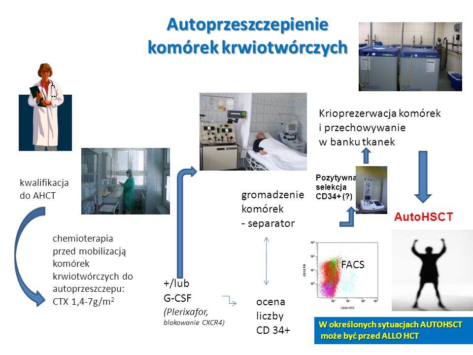 Autoprzeszczepienie komórek krwiotwórczych kwalifikacja do AHCT chemioterapia przed mobilizacją komórek krwiotwórczych do autoprzeszczepu: CTX 1,4-7g/