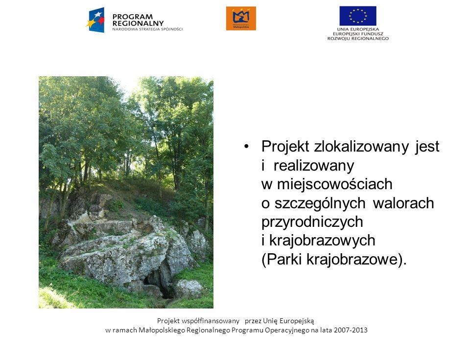 Projekt współfinansowany przez Unię Europejską w ramach Małopolskiego Regionalnego Programu Operacyjnego na lata 2007-2013 Projekt zlokalizowany jest