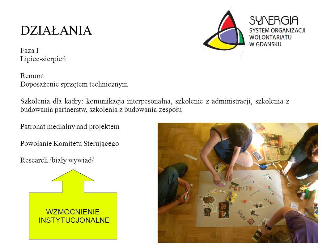 Analiza dostępnych broszur dotyczących wolontariatu dla ngo