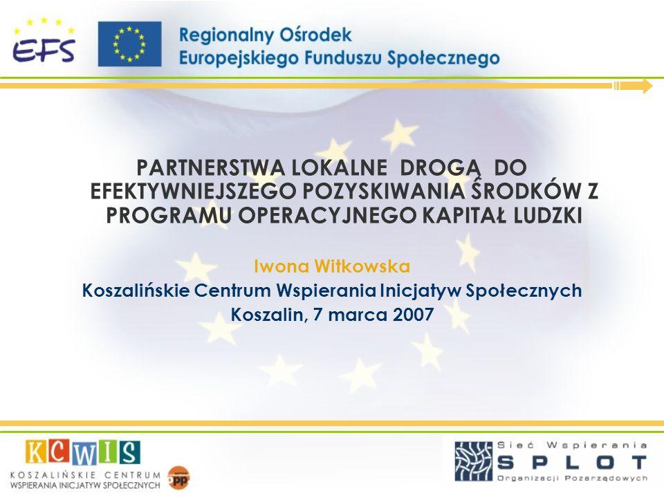 Idea partnerstwa lokalnego w usługach ROEFS spotkania z przedstawicielami środowisk lokalnych w 9 powiatach (od kwietnia 2007), spotkania poświęcone tworzeniu strategii powstawania i funkcjonowania porozumień w lokalnych środowiskach, szkolenia z zakresu tworzenia partnerstw lokalnych, doradztwo z zakresu partnerstw lokalnych – pomoc w tworzeniu partnerstw, usługi informacyjne związane z tematyką partnerstw.