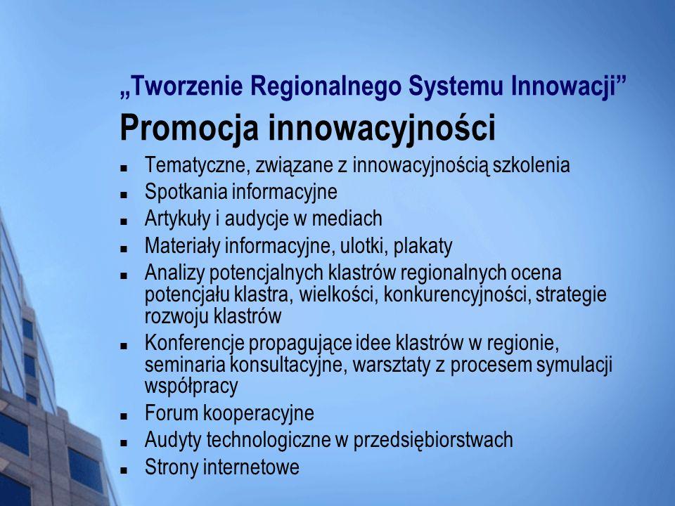 Tworzenie Regionalnego Systemu Innowacji Promocja innowacyjności Tematyczne, związane z innowacyjnością szkolenia Spotkania informacyjne Artykuły i au
