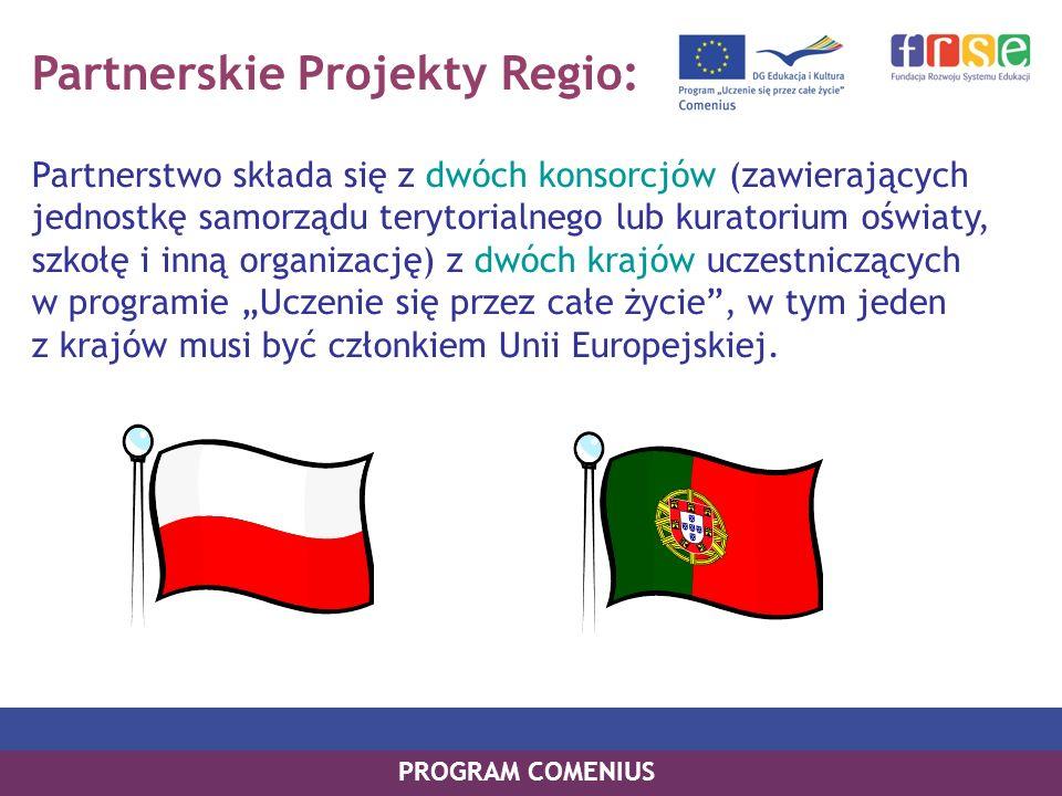 Partnerskie Projekty Regio: Partnerstwo składa się z dwóch konsorcjów (zawierających jednostkę samorządu terytorialnego lub kuratorium oświaty, szkołę