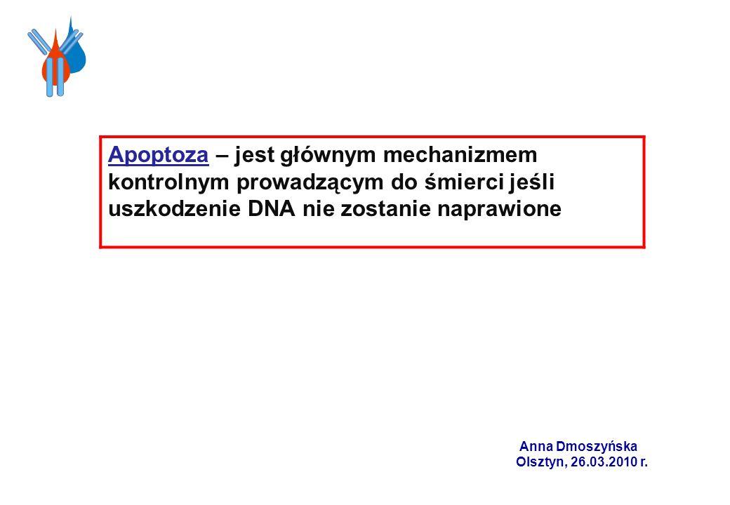 Apoptoza – jest głównym mechanizmem kontrolnym prowadzącym do śmierci jeśli uszkodzenie DNA nie zostanie naprawione Anna Dmoszyńska Olsztyn, 26.03.201