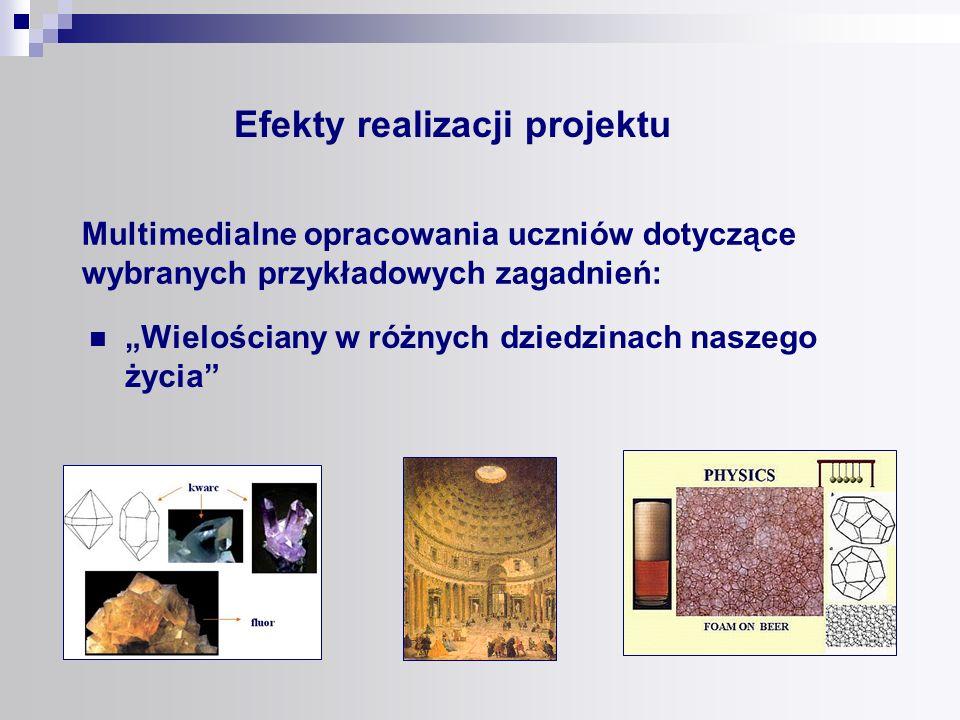 Efekty realizacji projektu publikujemy w postaci naszej strony internetowej www.mathematics.xt.pl