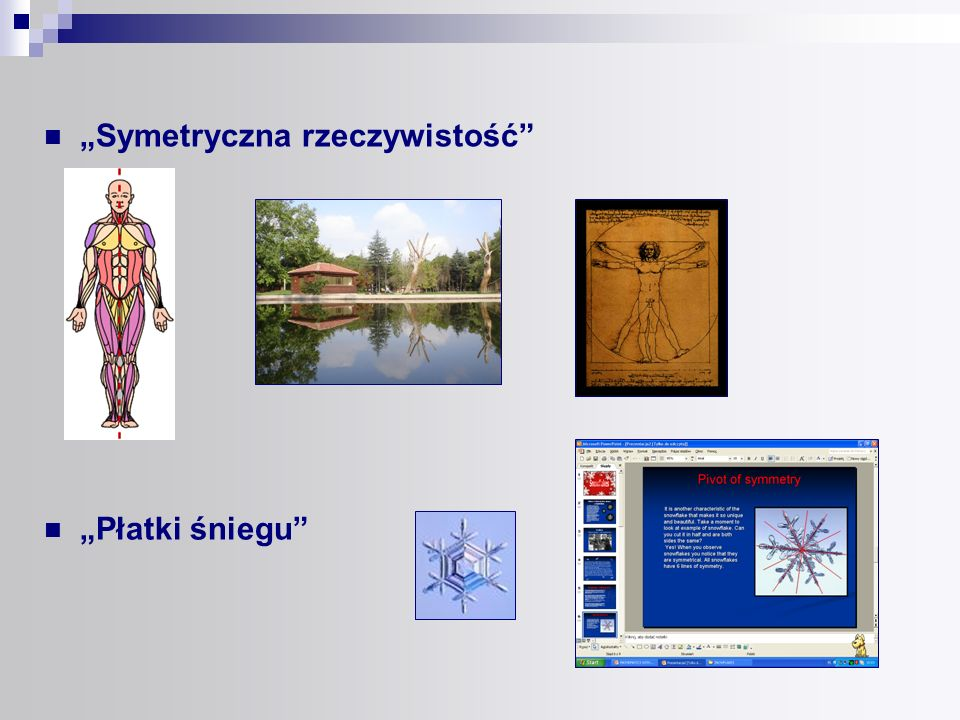 W trakcie realizacji naszego projektu opracowaliśmy( w programie Coreldraw ), a następnie opublikowaliśmy Angielsko – polski ilustrowany słownik pojęć i zwrotów matematycznych aby ułatwić matematyczną komunikację uczniów w języku angielskim.