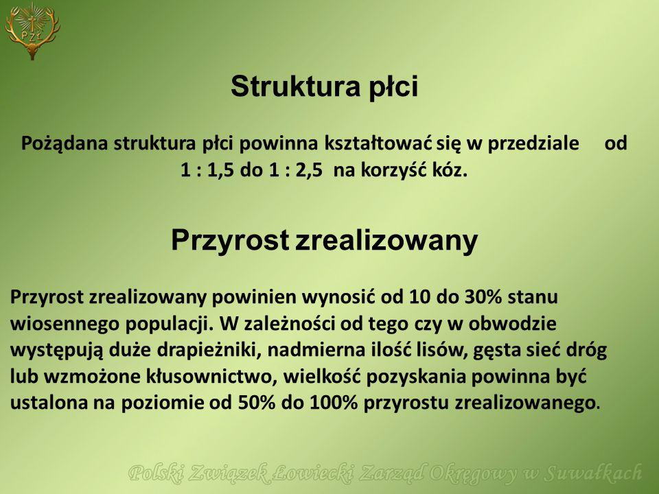 Struktura płci Pożądana struktura płci powinna kształtować się w przedziale od 1 : 1,5 do 1 : 2,5 na korzyść kóz. Przyrost zrealizowany Przyrost zreal