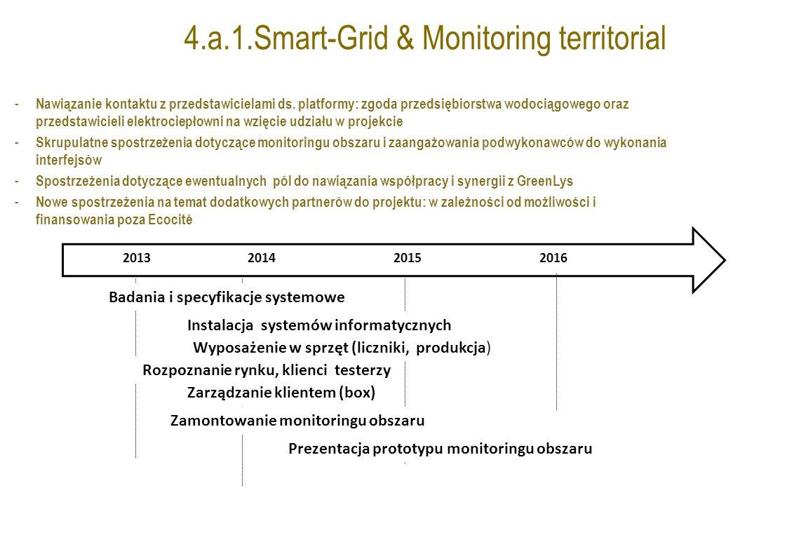 4.a.1.Smart-Grid & Monitoring territorial - Nawiązanie kontaktu z przedstawicielami ds.