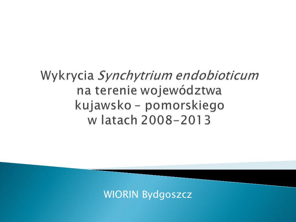 WIORIN Bydgoszcz