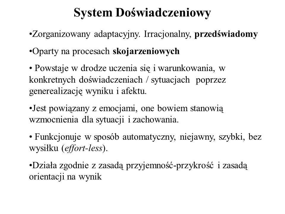 System Doświadczeniowy Zorganizowany adaptacyjny. Irracjonalny, przedświadomy Oparty na procesach skojarzeniowych Powstaje w drodze uczenia się i waru