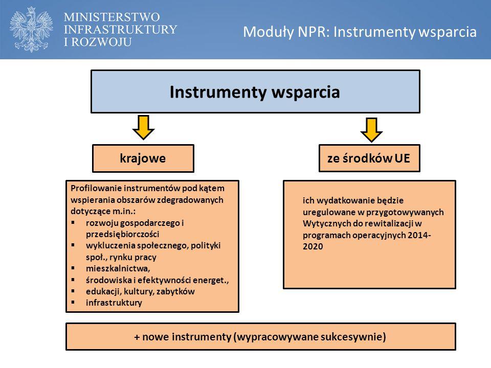 Moduły NPR: Instrumenty wsparcia Instrumenty wsparcia krajowe ze środków UE + nowe instrumenty (wypracowywane sukcesywnie) Profilowanie instrumentów p