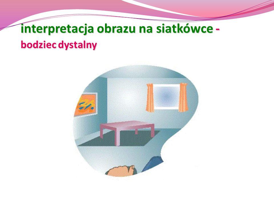 interpretacja obrazu na siatkówce - bodziec dystalny