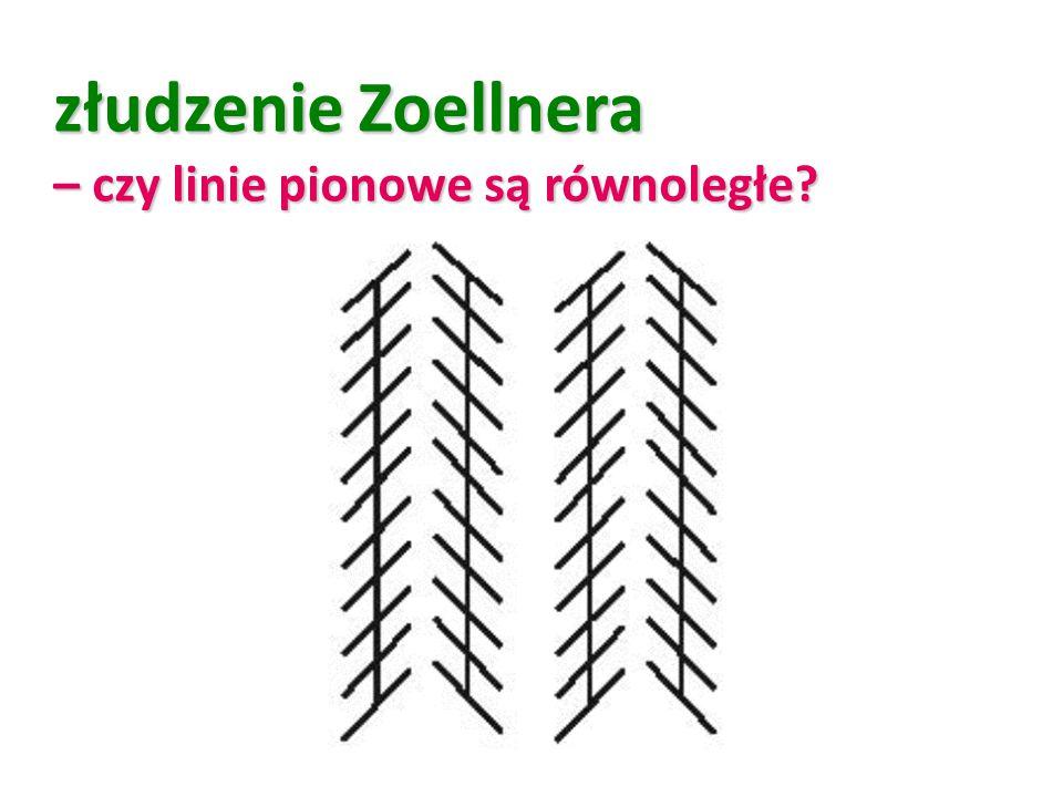 złudzenie Zoellnera – czy linie pionowe są równoległe?