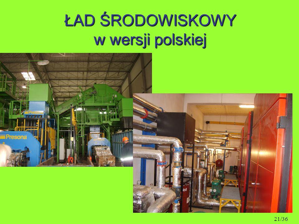 ŁAD ŚRODOWISKOWY w wersji polskiej 21/36