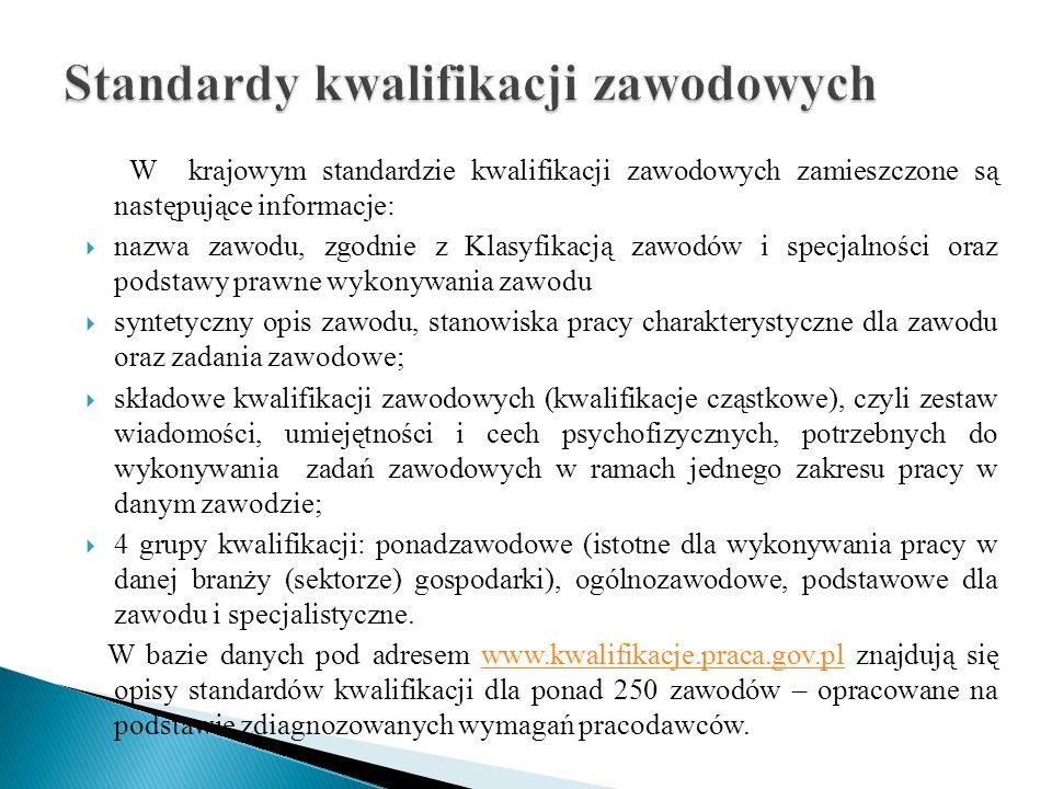 W krajowym standardzie kwalifikacji zawodowych zamieszczone są następujące informacje:  nazwa zawodu, zgodnie z Klasyfikacją zawodów i specjalności o