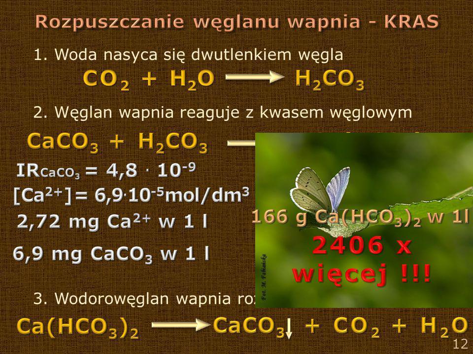 12 1. Woda nasyca się dwutlenkiem węgla 2. Węglan wapnia reaguje z kwasem węglowym 3. Wodorowęglan wapnia rozkłada się