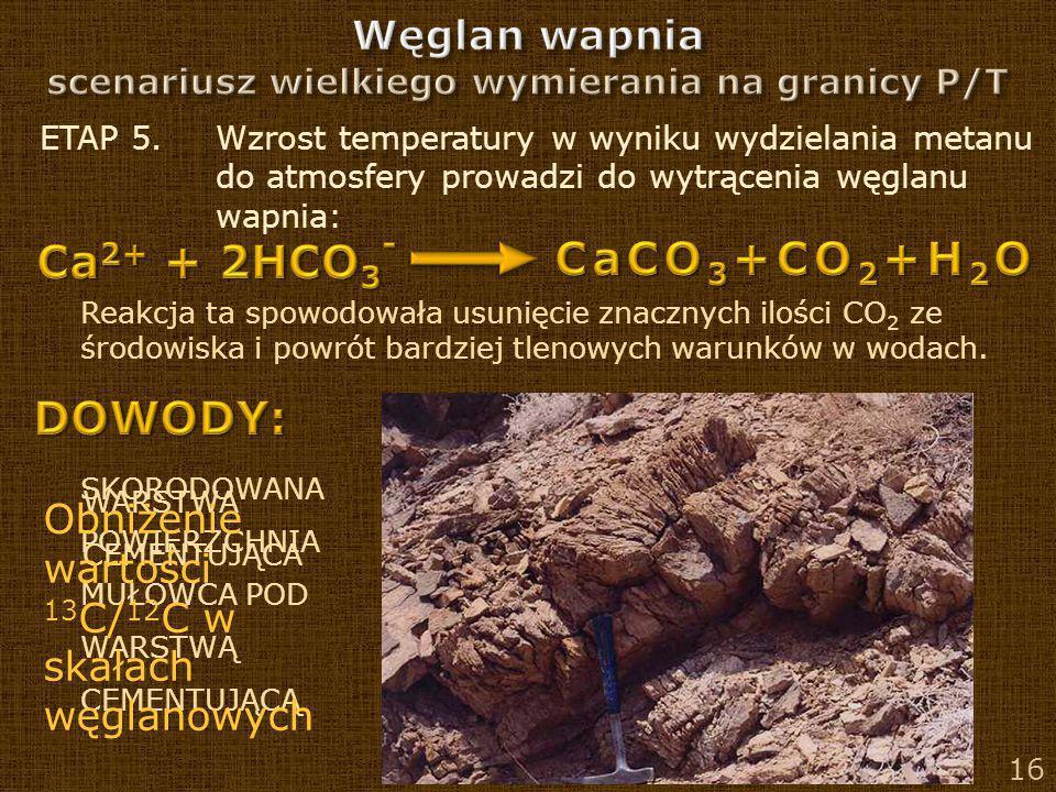 16 ETAP 5. Wzrost temperatury w wyniku wydzielania metanu do atmosfery prowadzi do wytrącenia węglanu wapnia: Reakcja ta spowodowała usunięcie znaczny