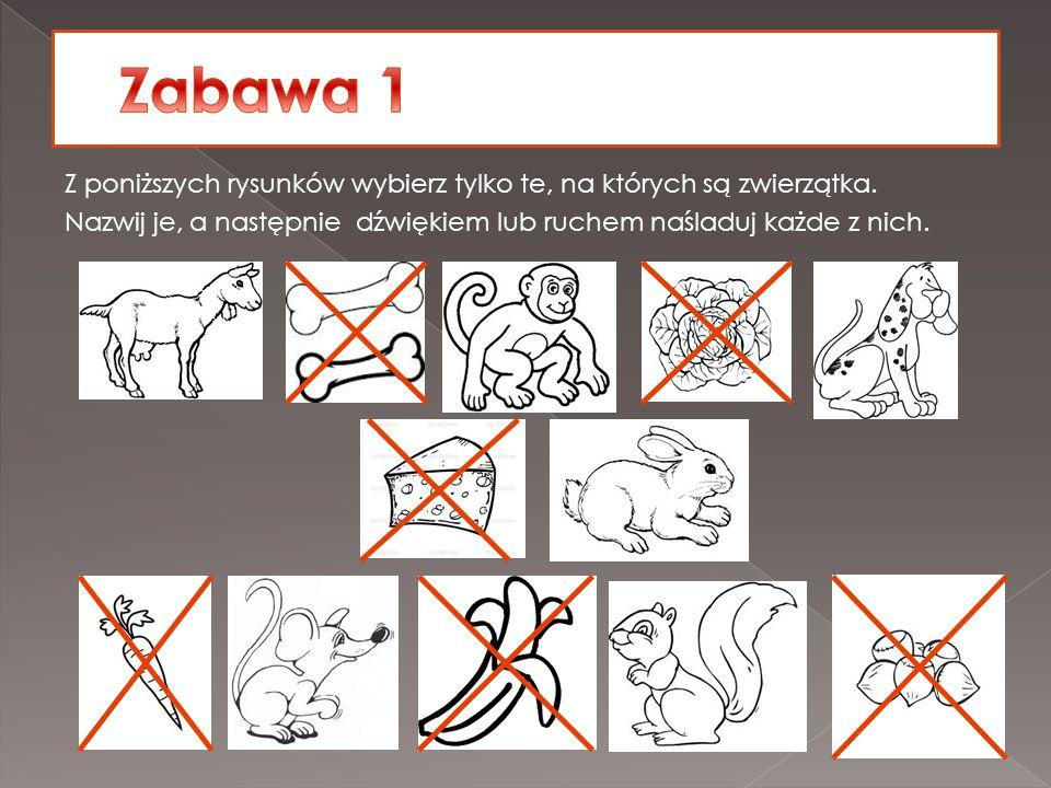 Z poniższych rysunków wybierz tylko te, na których są zwierzątka. Nazwij je, a następnie dźwiękiem lub ruchem naśladuj każde z nich.