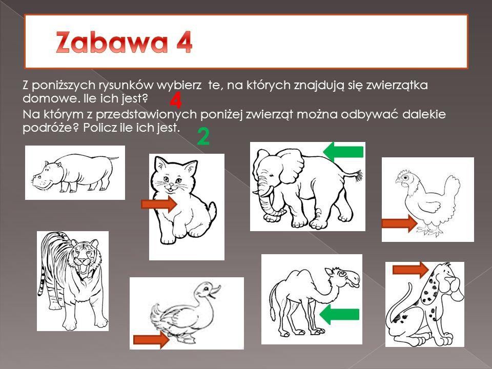 Z poniższych rysunków wybierz te, na których znajdują się zwierzątka domowe. Ile ich jest? Na którym z przedstawionych poniżej zwierząt można odbywać