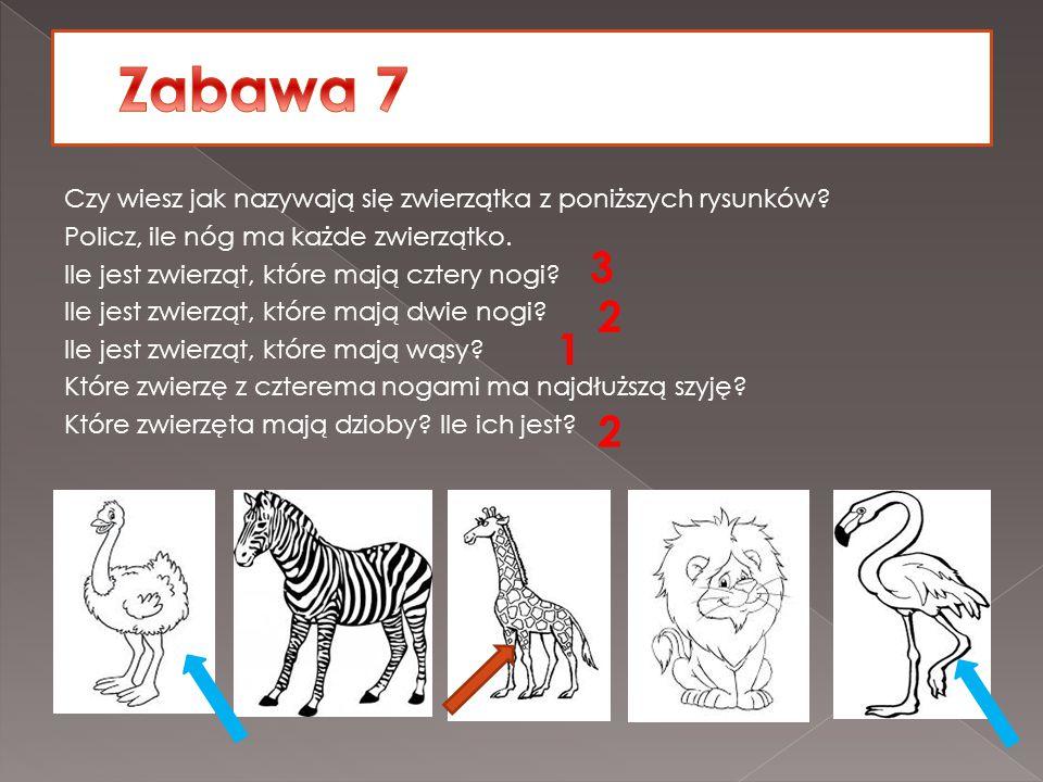 Czy wiesz jak nazywają się zwierzątka z poniższych rysunków? Policz, ile nóg ma każde zwierzątko. Ile jest zwierząt, które mają cztery nogi? Ile jest