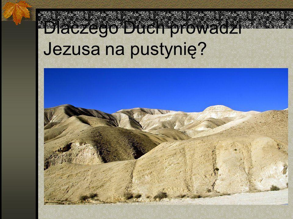 Pierwsze kuszenie Jezus mierzy się z przeciwnikiem nie jako Syn Boży lecz jako człowiek Napisano: Nie samym chlebem żyje człowiek w.4