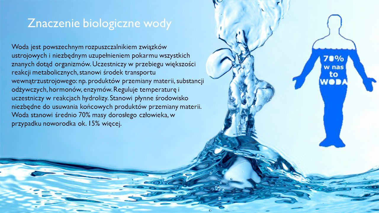 Woda jest powszechnym rozpuszczalnikiem związków ustrojowych i niezbędnym uzupełnieniem pokarmu wszystkich znanych dotąd organizmów. Uczestniczy w prz