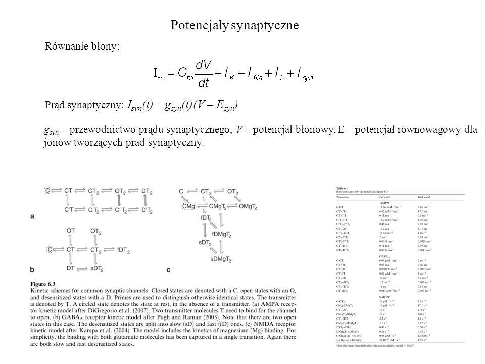 Prąd synaptyczny: I syn (t) =g syn (t)(V – E syn ) g syn – przewodnictwo prądu synaptycznego, V – potencjał błonowy, E – potencjał równowagowy dla jon