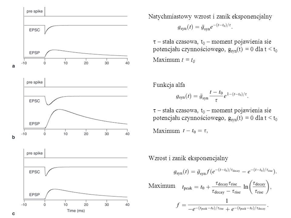 Natychmiastowy wzrost i zanik eksponencjalny  – stała czasowa, t 0 – moment pojawienia sie potencjału czynnościowego, g syn (t) = 0 dla t < t 0 Funk