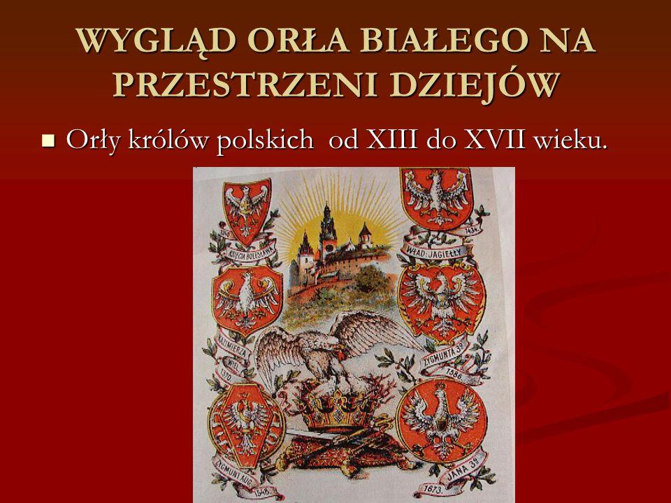 WYGLĄD ORŁA BIAŁEGO NA PRZESTRZENI DZIEJÓW Orły królów polskich od XIII do XVII wieku. Orły królów polskich od XIII do XVII wieku.