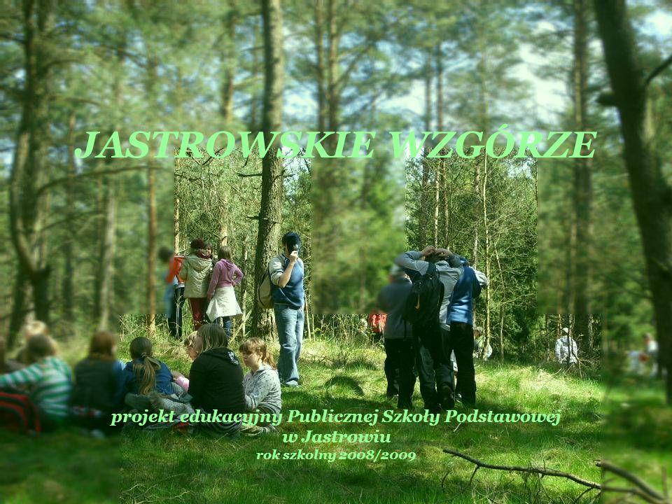 JASTROWSKIE WZGÓRZE projekt edukacyjny Publicznej Szkoły Podstawowej w Jastrowiu rok szkolny 2008/2009