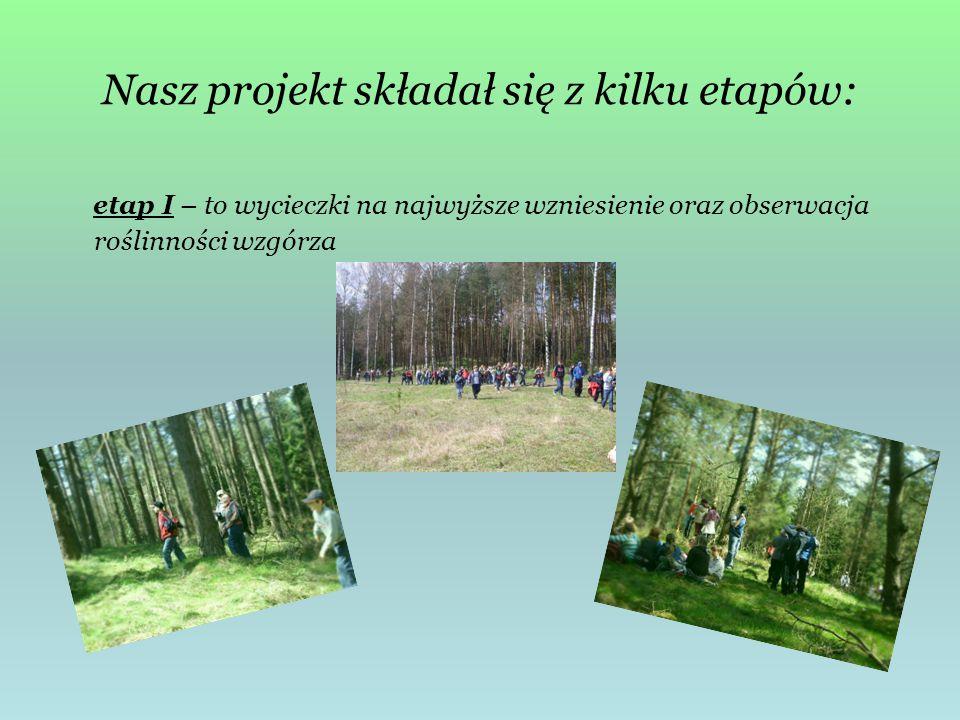 Nasz projekt składał się z kilku etapów: etap I – to wycieczki na najwyższe wzniesienie oraz obserwacja roślinności wzgórza
