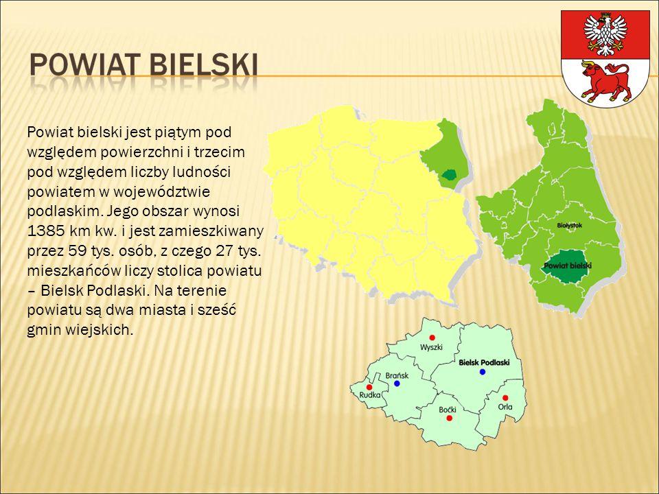 Powiat bielski jest piątym pod względem powierzchni i trzecim pod względem liczby ludności powiatem w województwie podlaskim. Jego obszar wynosi 1385