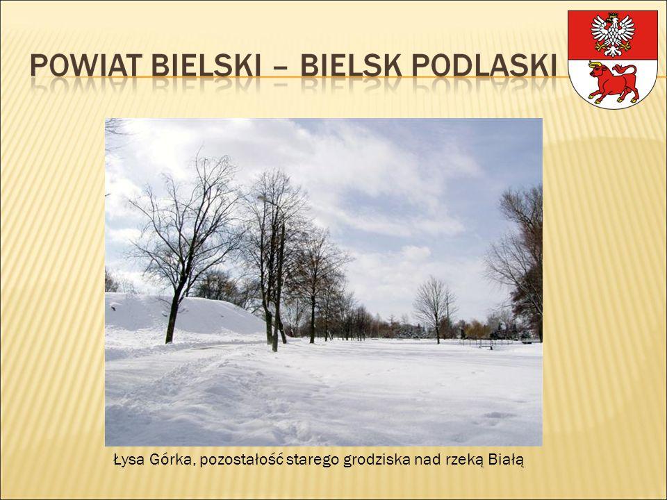 Łysa Górka, pozostałość starego grodziska nad rzeką Białą