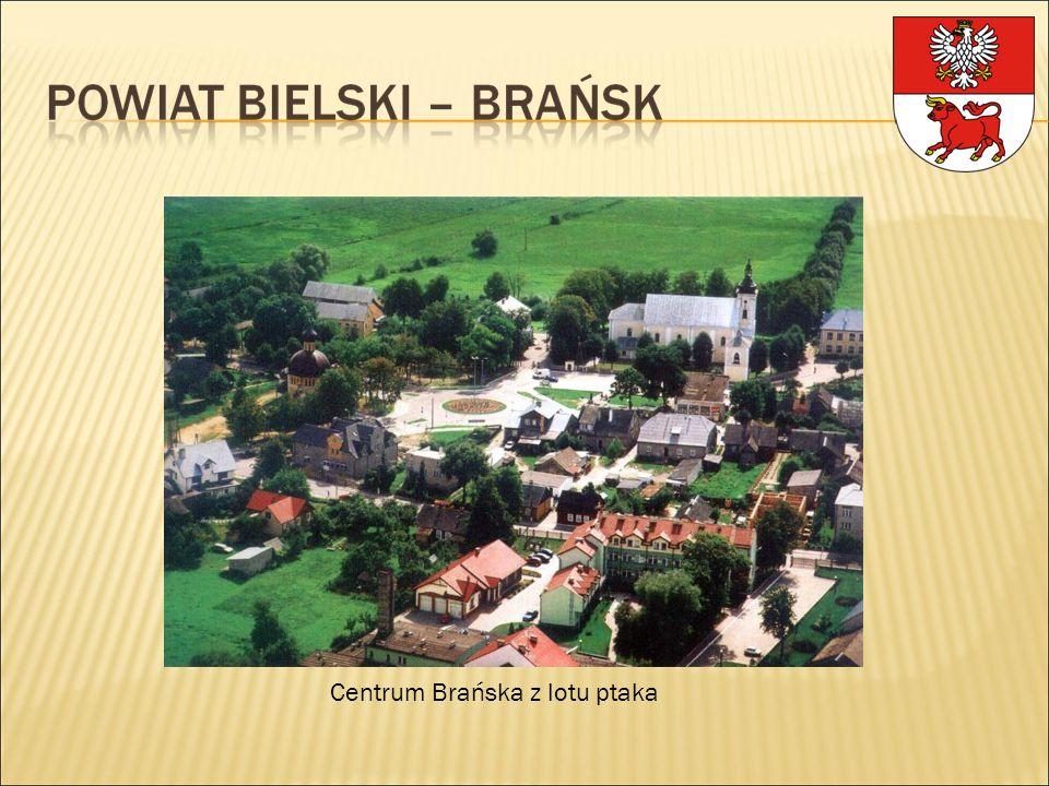 Kościół pw. Wniebowzięcia NMP, XIX w.