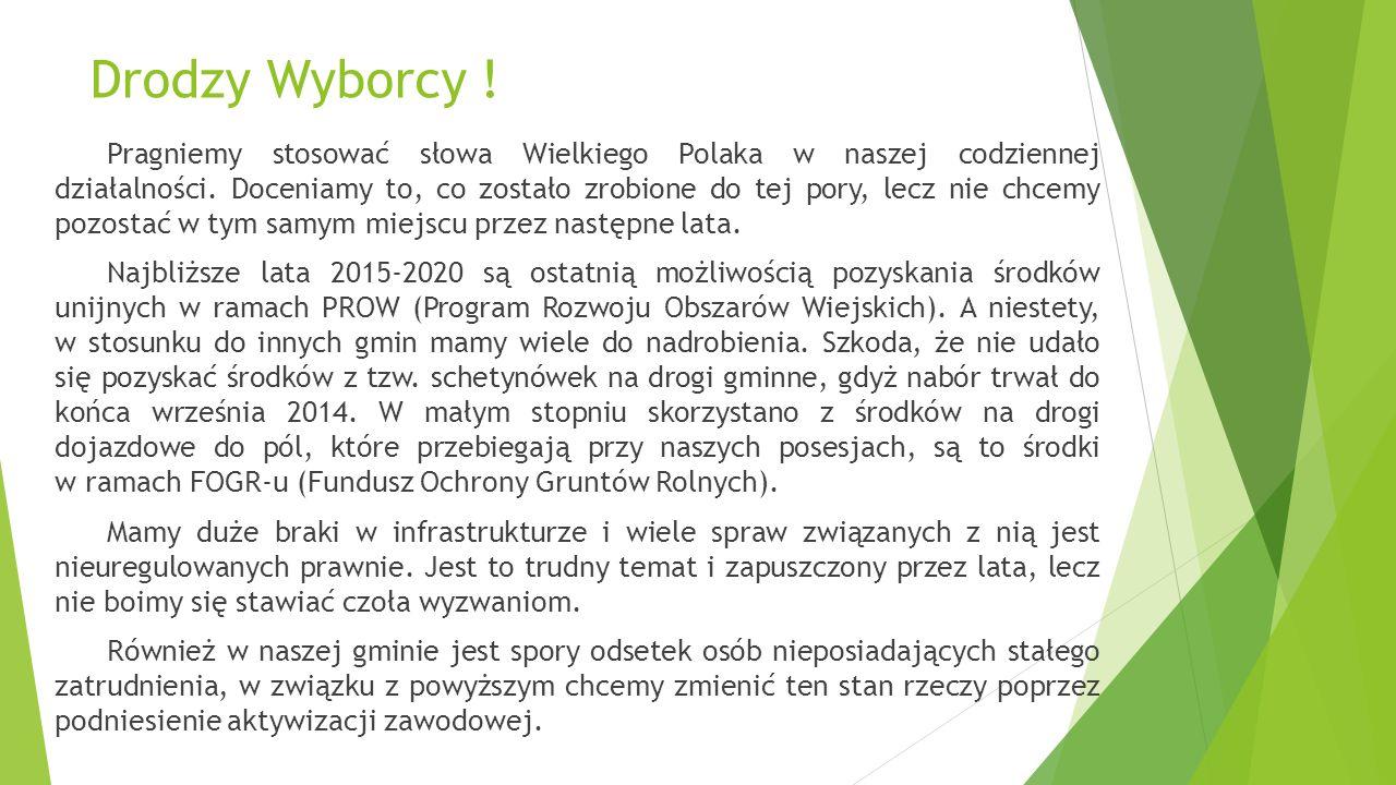  W Droszkowie zacząłem współpracę ze Stowarzyszeniem Miłośników Droszkowa od stworzenia strony internetowej www.droszkow.eu.