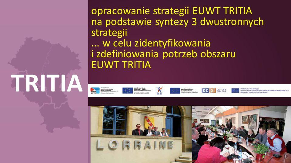 TRITIA opracowanie strategii EUWT TRITIA na podstawie syntezy 3 dwustronnych strategii... w celu zidentyfikowania i zdefiniowania potrzeb obszaru EUWT
