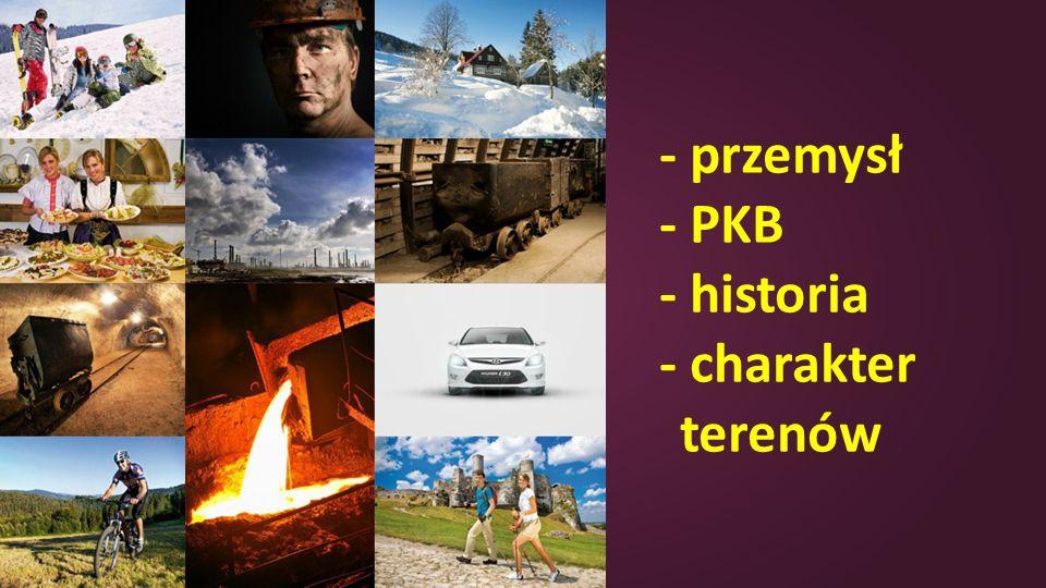 - przemysł - PKB - historia - charakter terenów