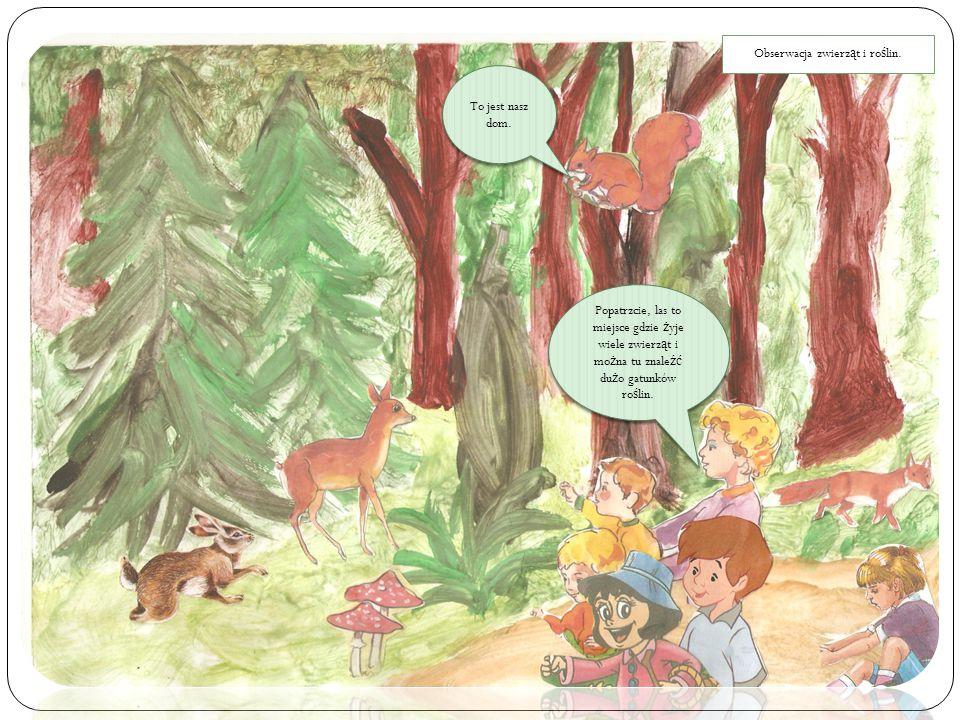 To jest nasz dom. Popatrzcie, las to miejsce gdzie ż yje wiele zwierz ą t i mo ż na tu znale źć du ż o gatunków ro ś lin. Obserwacja zwierz ą t i ro ś