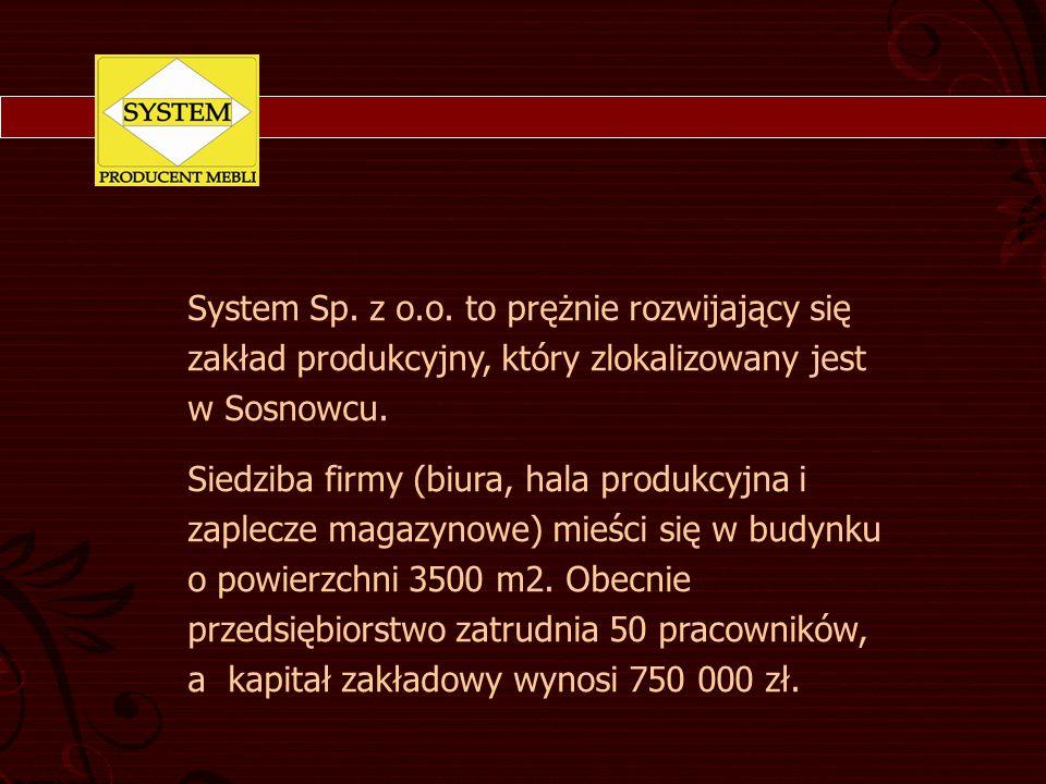 System Sp. z o.o. to prężnie rozwijający się zakład produkcyjny, który zlokalizowany jest w Sosnowcu. Siedziba firmy (biura, hala produkcyjna i zaplec