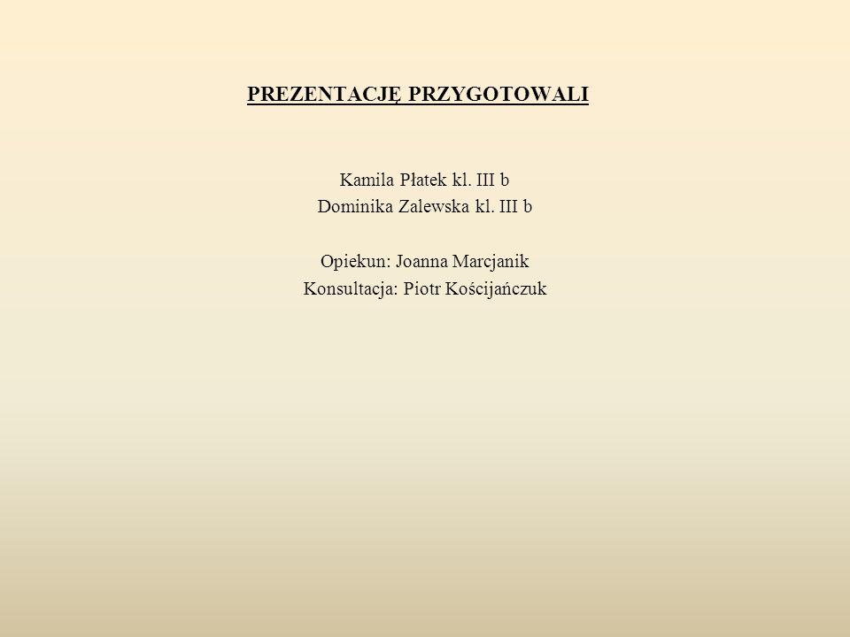 PREZENTACJĘ PRZYGOTOWALI Kamila Płatek kl. III b Dominika Zalewska kl. III b Opiekun: Joanna Marcjanik Konsultacja: Piotr Kościjańczuk